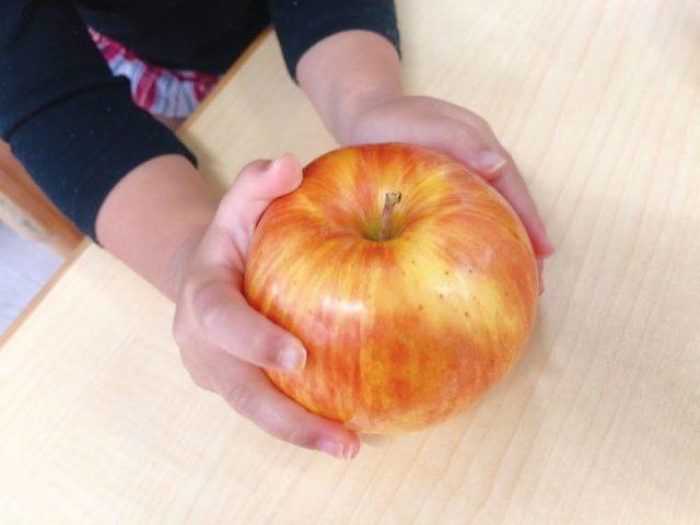 りんごを触る