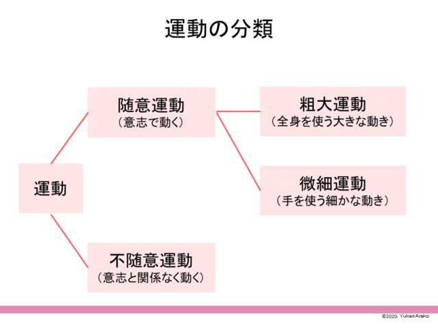 運動の分類